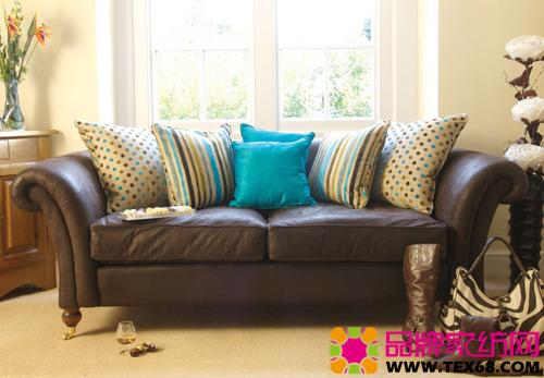 精美靠垫搭配打造清透沙发区(2)