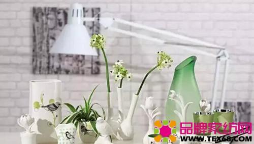 绿植花瓶手绘彩铅