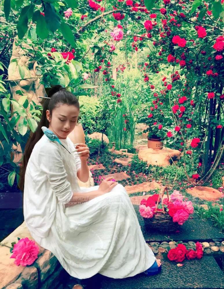 富安娜家纺代言人杨丽萍的鲜花保养计