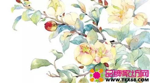 彩色花鸟意境手绘