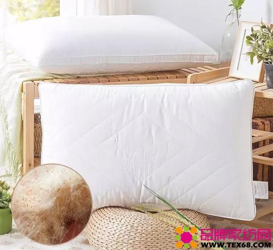 香蒲定型枕